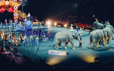 circus-ban-honduras